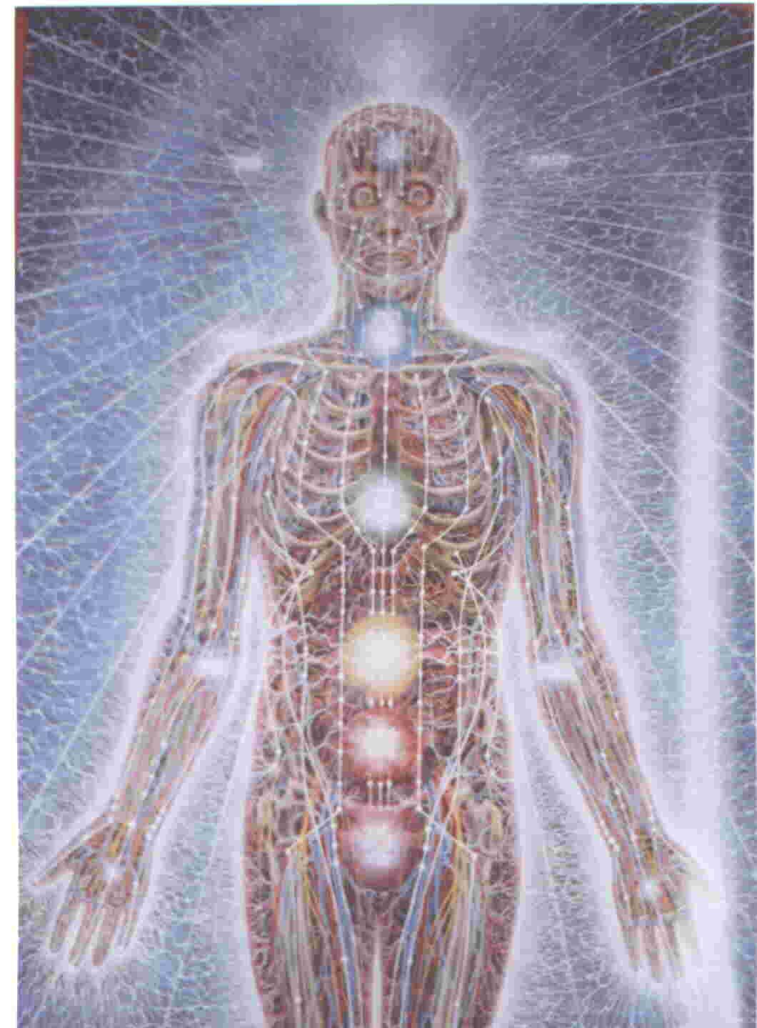 Innate Healing